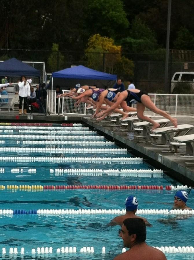 Scots+swim+to+victory