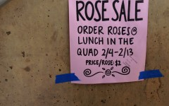 Rose sales are blooming