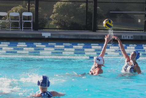 Carlmont Scots lose to Castilleja Gators