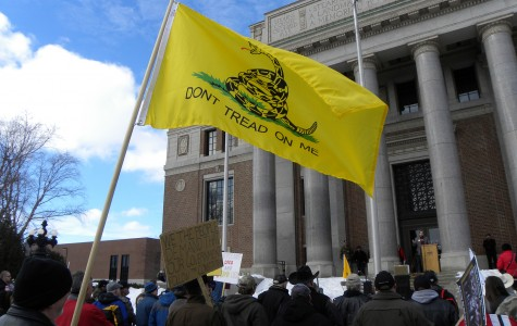 A Tea Party Rally in Washington (Fibonacci Blue-Flickr)
