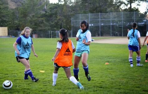 Soccer season ignites competition