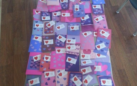 CSF members created dozens of Valentines cards for seniors in the community.