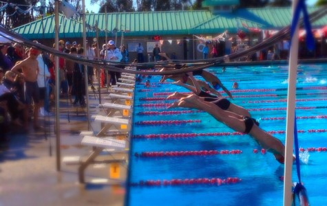 Scots swim at 2014 PAL finals.