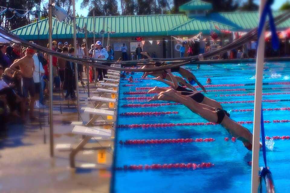 Scots swim at 2014 PAL finals.