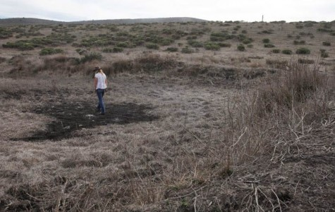 Dried-up information: education of California's drought is weak