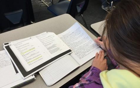 Sophomore Megan Tao works diligently on her homework.
