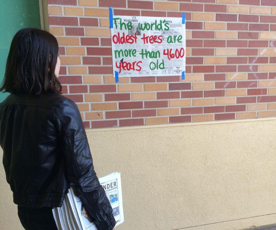 Journalism student observes trash-awareness posters using 'The Highlander' as background paper