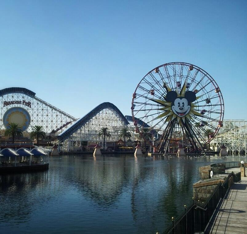 An unhealthy but still happy Disneyland. Get your tickets, but make sure you get vaccinated.