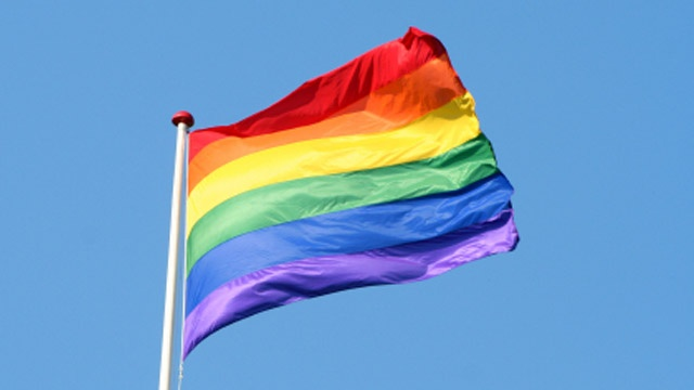 The+rainbow+flag+is+a+symbol+for+the+LGBT%2B+community+and+its+allies%2C+such+as+Carlmont%27s+Queer-Straight+Alliance.
