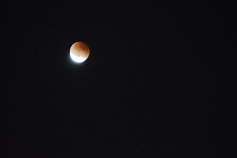 Blood moon amazes Peninsula crowds after initial setback