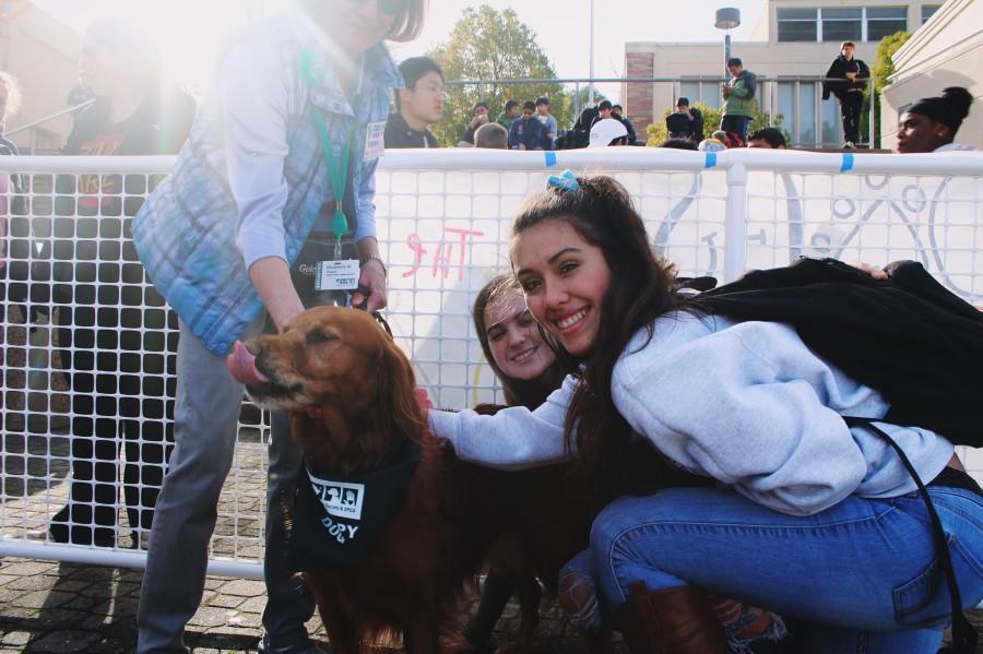 Juniors Maya Paulo and Casey Costello gather around therapy dog Mariana.