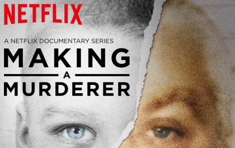 'Making a Murderer' delivers intense crime documentary