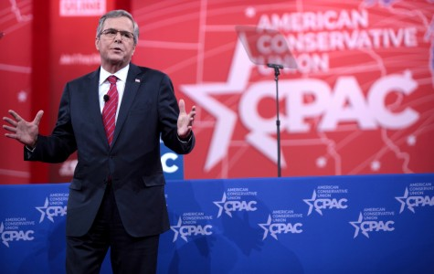 Jeb Bush may have had a few good points during the GOP debates, but these points did not extend to his polls.
