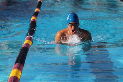 Swimming Scots lose to rival Bears