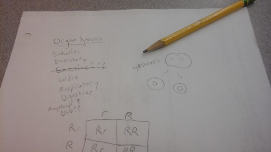 Sophomores had to recall knowledge acquired in freshman biology during the Smarter Balanced testing.