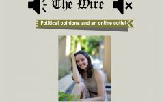 Political opinions and an online outlet for socializing