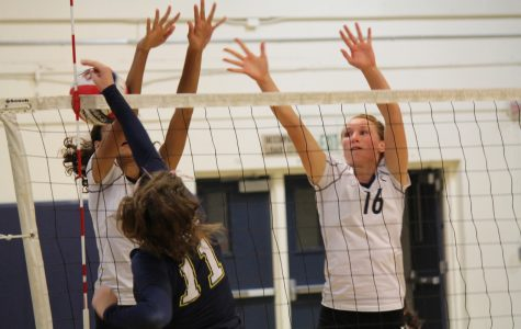 Varsity volleyball struggles against Notre Dame