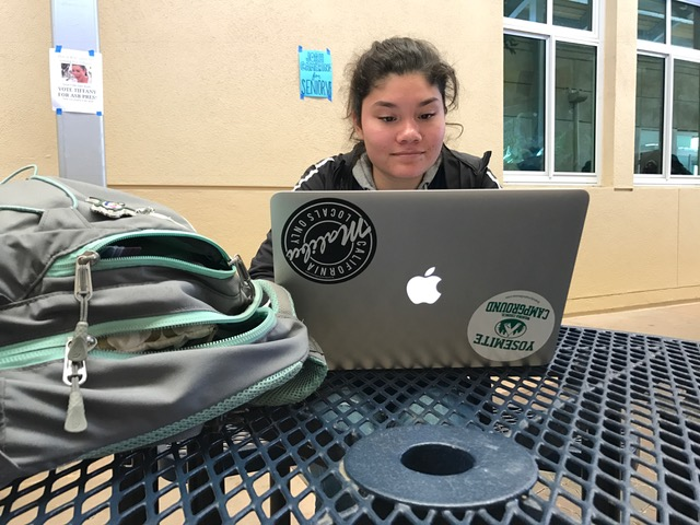 Sophomore Kaitlyn Gates works on her essay at lunch and after school.