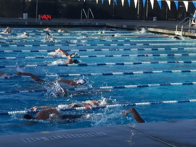 Carlmont swimmers practice under the trained eyes of their coach at practice on Feb. 16.