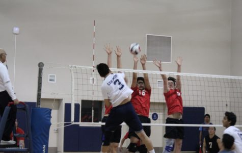 The Scots lose in straight sets to Aragon