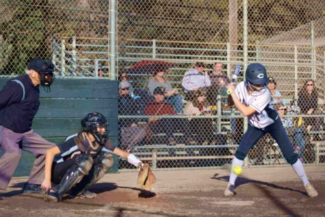 Carlmont softball defeats Mountain View