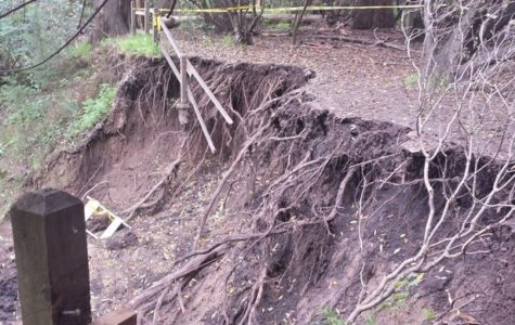 After the heavy rains in February, the wooden fences at Twin Pines Park have collapsed due to the unstable footing underneath.