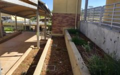 Environmental Club plans to turn these planter boxes in between upper and lower D-hall into a community garden. The club meets every Wednesday in room C3.