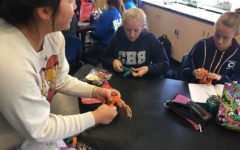 At their past meeting, members of Hope Brigade created toys from shredded tags and shirts for shelter animals. Club President Cindy Chen, a freshman, teaches club members how to make these toys.