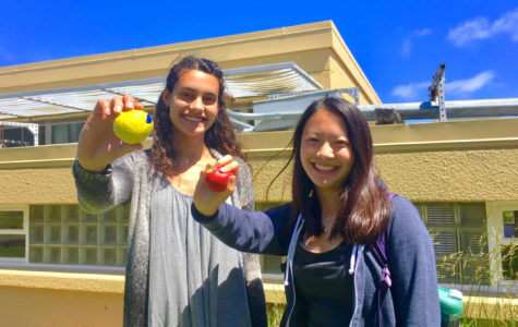 Relaxation Club co-founders Sophie Srivastava and Samantha Owyang, both juniors, display stress balls they made themselves as part of a club activity.