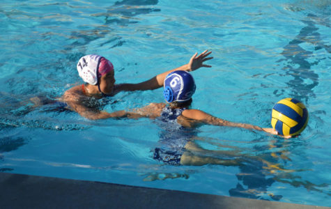 Summer practices prepare water polo for the upcoming season