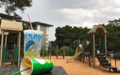 Despite efforts to keep Belameda Park clean, trash can still be found on the premises.