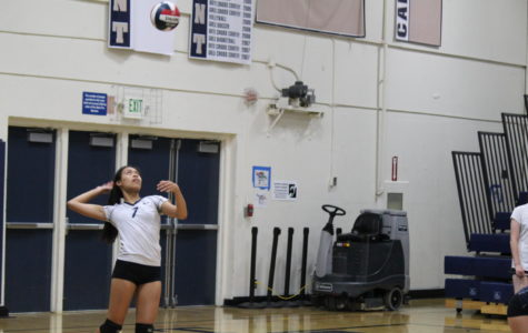 JV volleyball beats the Cougars, improving record to 8-2