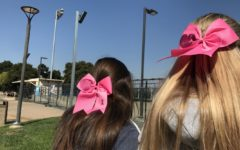 Cheerleaders Rachel McDonald, a senior, and Nicole Eftimiou, a senior, wear pink ribbons on Friday in support for Breast Cancer Awareness Week.