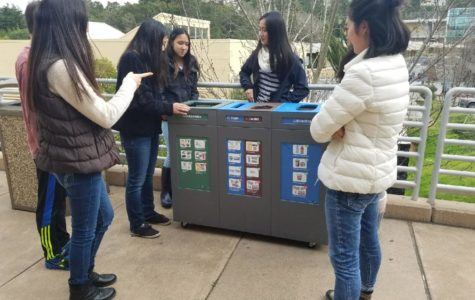 Green Team continues to improve the tri-bin system