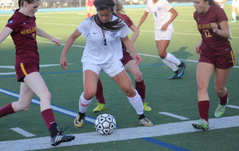 Samantha Phan defends the ball against the Bears.