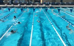 Students are separated by lanes according to their swimming capability to practice freestyle.