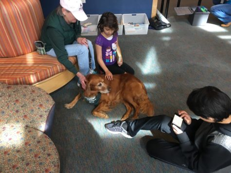 Dogs and kids form 'pawsitive' bond through Paws for Tales