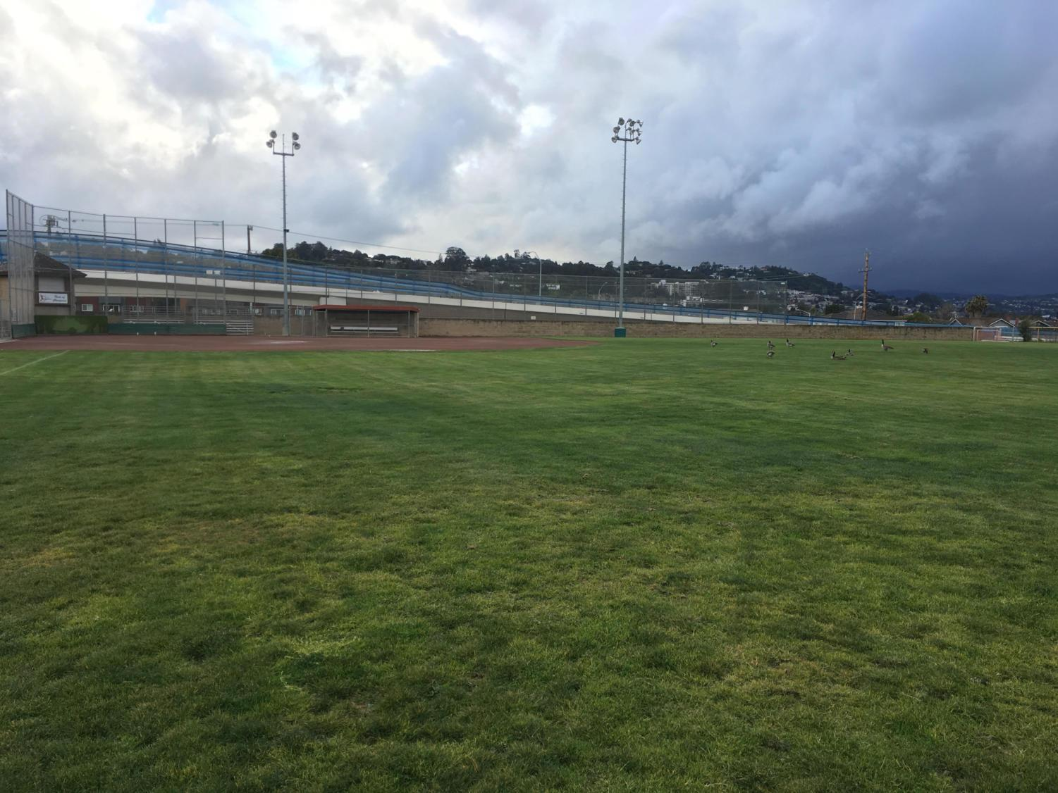 The north field at the Belmont Sports Complex is  set to be replaced with synthetic turf. It's troublesome maintenance added on to the overall state of the field has led to its eventual remodel.