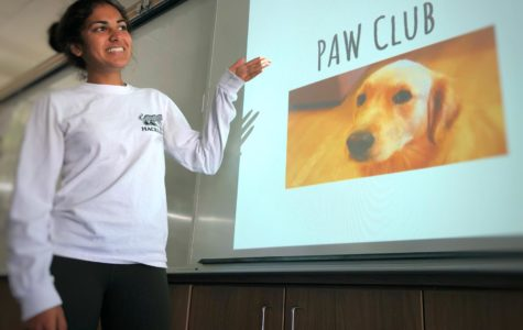 Protecting Animals Worldwide Club lends a paw to animals in need