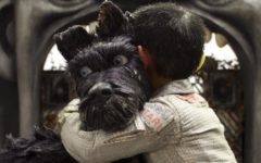 Child, Atari, and dog, Chief, embrace. The film