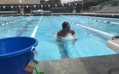 Memorial Scholarship Swim-a-Thon honors Clara Tao