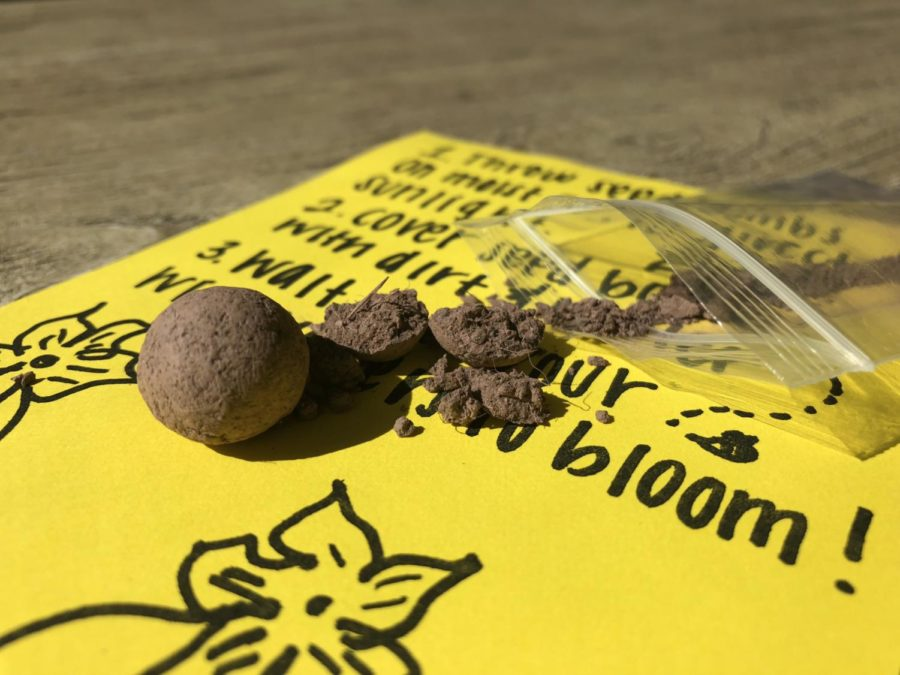 Students received two seed bombs and a how to flyer at the Save the Bees booth.