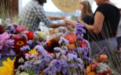 New Bay Area farmers' market's popularity grows