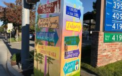 This utility box, located near Ralston Avenue, was painted by Chelsea Stewart, a volunteer artist. She spent many weeks working on it and was eventually reimbursed $250 for the supplies she used.