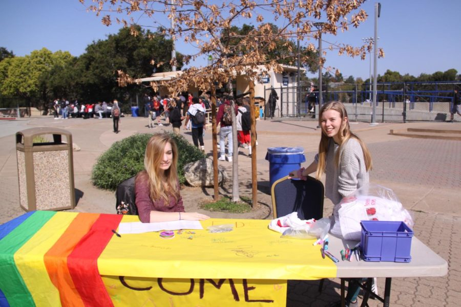 Cameron Garcia Brown, a senior, and Sophia Krackov, a junior, encourage other students to sign the Ally Pledge in the quad.