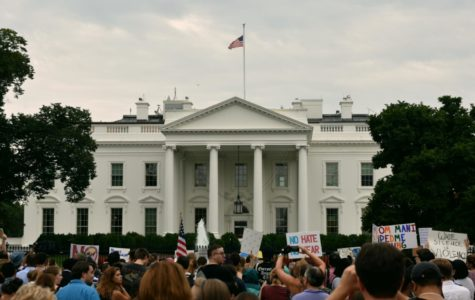 Opinion: Limiting protests conflicts with American principles