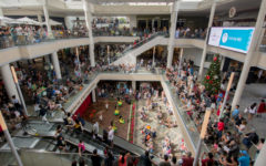 Malls such as this one are often filled with people trying to buy cheap items on Black Friday.