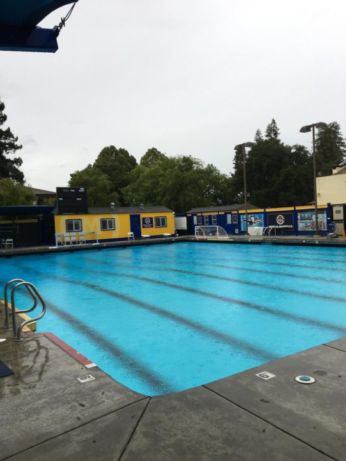 Menlo coach, Jack Bowen holds a summer water polo league in which many Carlmont athletes participate in