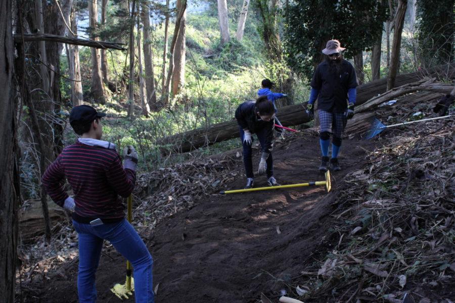 Freesia+Finn%2C+Chanel+Gruevarra%2C+and+Mikayla+Acosta+volunteer+at+the+Laguna+Honda+community+trail+project.+
