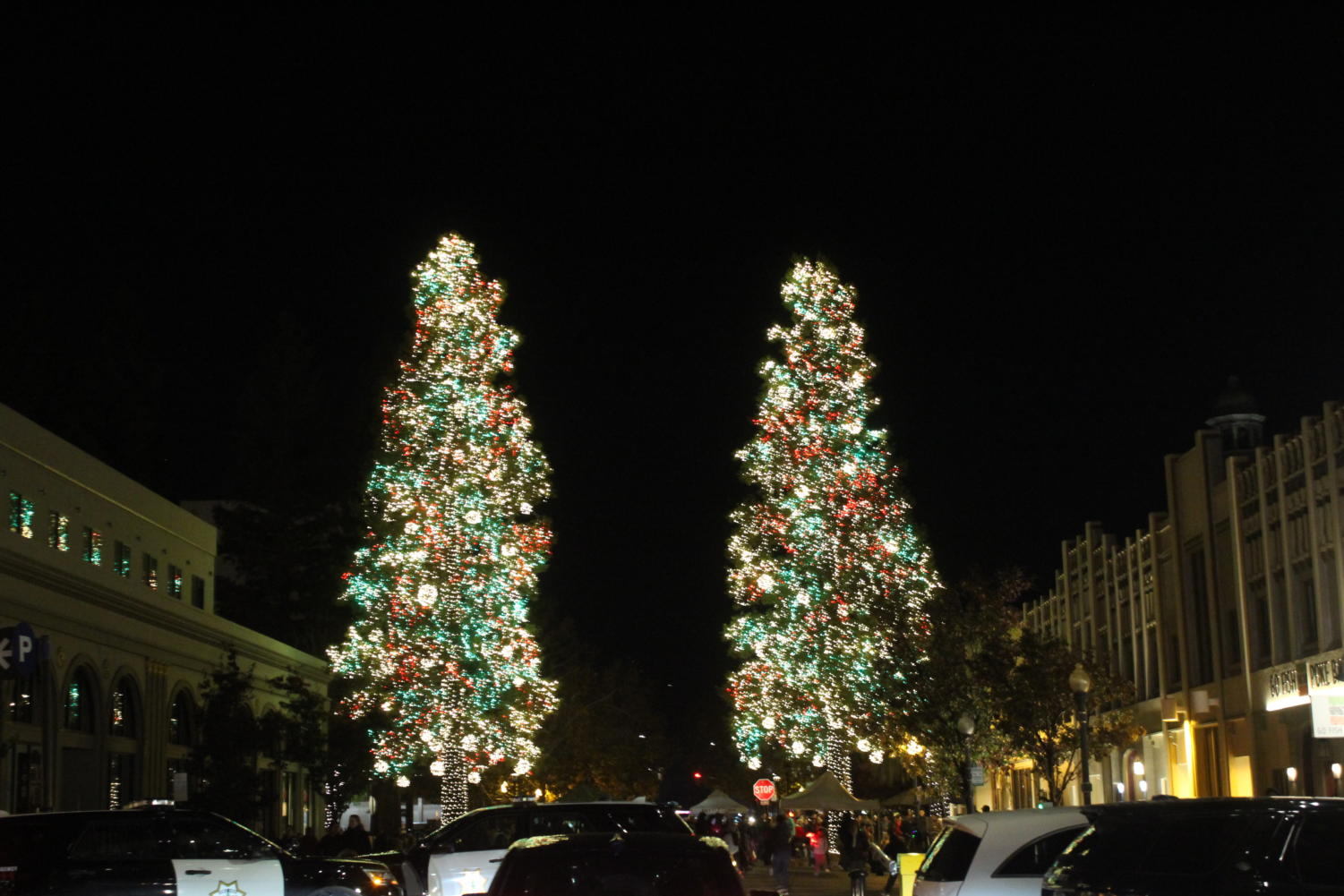 Following+the+Hometown+Holidays+traditions%2C+two+Christmas+trees+were+adorned+with+sparkling+holiday+lights.